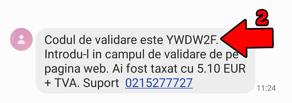 Plata SMS pas2.2